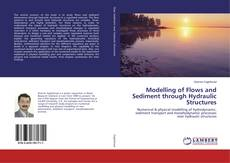 Capa do livro de Modelling of Flows and Sediment through Hydraulic Structures