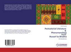 Bookcover of Postcolonial Literature & Phenomenology from Husserl to Bhabha
