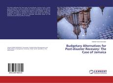 Bookcover of Budgetary Alternatives for Post-disaster Recovery: The Case of Jamaica
