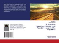 Bookcover of A Numerical Experimentation on Fluid Flow through a Sudden Expansion