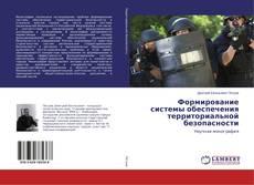 Формирование системы обеспечения территориальной безопасности的封面