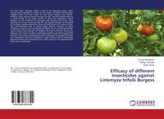 Efficacy of different insecticides against Liriomyza trifolii Burgess的封面