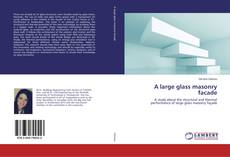 Bookcover of A large glass masonry facade