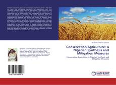 Bookcover of Conservation Agriculture: A Nigerian Synthesis and Mitigation Measures