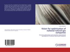 Bookcover of Vision for optimisation of national natural gas companies