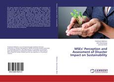 Portada del libro de MSEs' Perception and Assessment of Disaster Impact on Sustainability