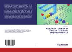 Bookcover of Production Function of Firms in Transition: Empirical Evidence