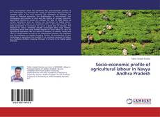 Bookcover of Socio-economic profile of agricultural labour in Navya Andhra Pradesh