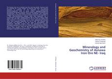 Обложка Mineralogy and Geochemistry of Asnawa Iron Ore NE- Iraq