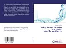 Buchcover von Water Beyond Domestic use: Home Based Productive Use