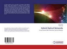 Borítókép a  Hybrid Optical Networks - hoz