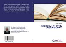"Обложка Практикум по курсу ""Эконометрика"""