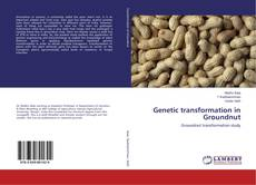 Bookcover of Genetic transformation in Groundnut