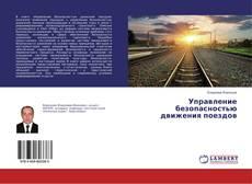 Bookcover of Управление безопасностью движения поездов