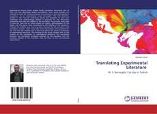 Couverture de Translating Experimental Literature