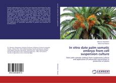Bookcover of In vitro date palm somatic embryo from cell suspension culture