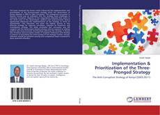 Bookcover of Implementation & Prioritization of the Three-Pronged Strategy