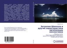 Bookcover of Энтропия Шеннона и другие характеристики организации коллективов