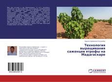 Bookcover of Технология выращивания саженцев ятрофы на Мадагаскаре