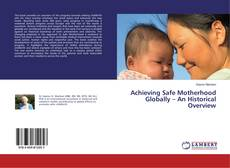 Bookcover of Achieving Safe Motherhood Globally – An Historical Overview