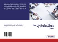 Copertina di Credit Risk Grading Adopted by Private Commercial Banks