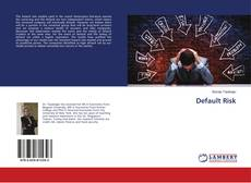 Default Risk kitap kapağı