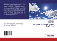 Borítókép a  Methyl Bromide and Ozone Depletion - hoz