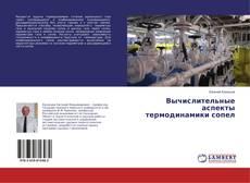 Bookcover of Вычислительные аспекты термодинамики сопел