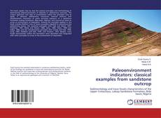 Bookcover of Paleoenvironment indicators: classical examples from sandstone outcrop