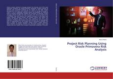 Bookcover of Project Risk Planning Using Oracle Primavera Risk Analysis