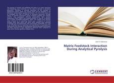 Copertina di Matrix Feedstock Interaction During Analytical Pyrolysis