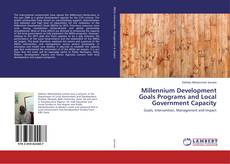 Capa do livro de Millennium Development Goals Programs and Local Government Capacity