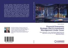 Buchcover von Financial Economics Strategic Risk & Investment Management Under Cover
