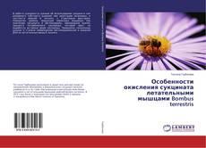 Bookcover of Особенности окисления сукцината летательными мышцами Bombus terrestris