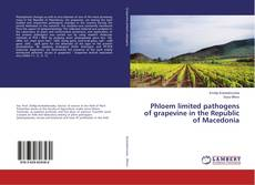Bookcover of Phloem limited pathogens of grapevine in the Republic of Macedonia