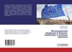 Borítókép a  Вынужденная миграция в Европе: проблемы и вызовы времени - hoz