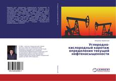 Bookcover of Углеродно-кислородный каротаж определения текущей нефтенасыщенности