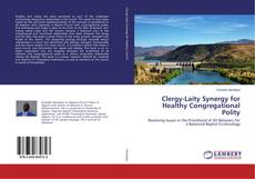 Обложка Clergy-Laity Synergy for Healthy Congregational Polity