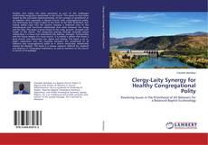Clergy-Laity Synergy for Healthy Congregational Polity kitap kapağı