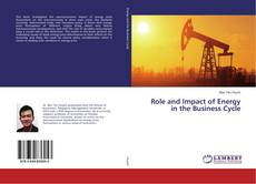 Role and Impact of Energy in the Business Cycle kitap kapağı