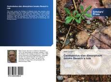 Bookcover of Centrobolus size dimorphism breaks Rensch's rule
