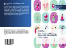 Risk Factors of Teenage Pregnancy & Parenthood kitap kapağı