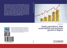 Public expenditure, debt sustainability and economic growth in Nigeria kitap kapağı