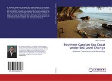Bookcover of Southern Caspian Sea Coast under Sea Level Change