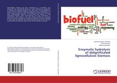 Buchcover von Enzymatic hydrolysis of delignificated lignocellulosic biomass