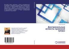 Bookcover of Доктринальные аспекты правовой среды