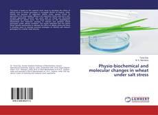 Buchcover von Physio-biochemical and molecular changes in wheat under salt stress