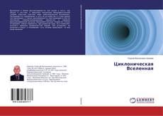 Capa do livro de Циклоническая Вселенная