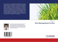 Bookcover of Zinc Management In Rice