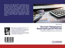 Экспорт Природных Энергоресурсов России的封面
